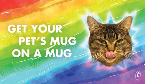 Get your pet's mug on a mug: giveaway plus an extract!