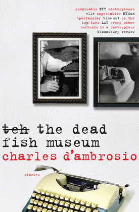 The Dead Fish Museum