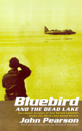 Bluebird and the Dead Lake