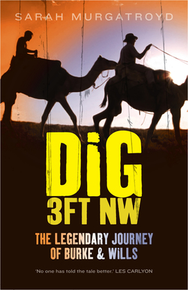 Dig 3ft NW