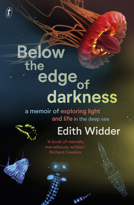 Below the Edge of Darkness
