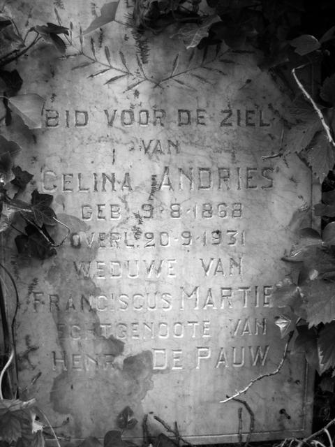 Image of the gravestone