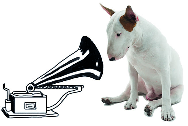 A Dog Named Jimmy with Gramophone